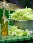 Holunderblütensirup mit Honig – der Duftrausch in der Flasche