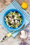 Griechischer Gurkensalat mit Schafskäse und Oliven gibt dem Sommertag den letzten Schliff