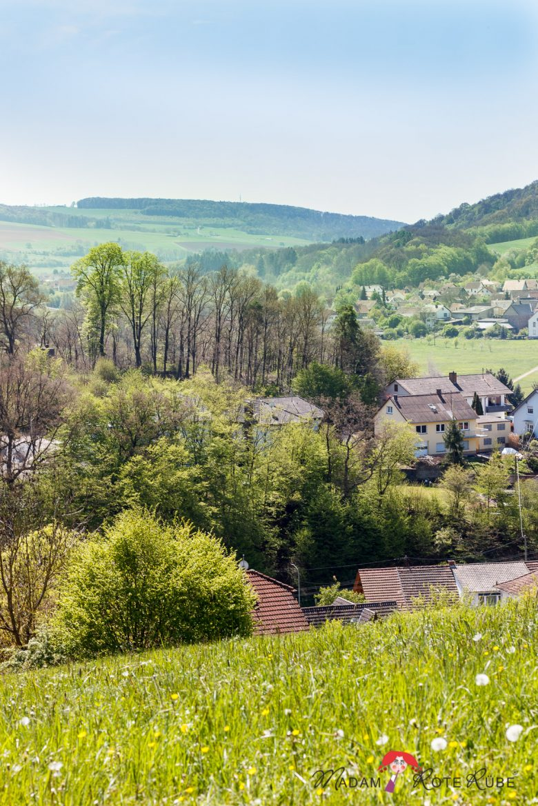 Madam Rote Rübe - Remigiusberg - Wanderung