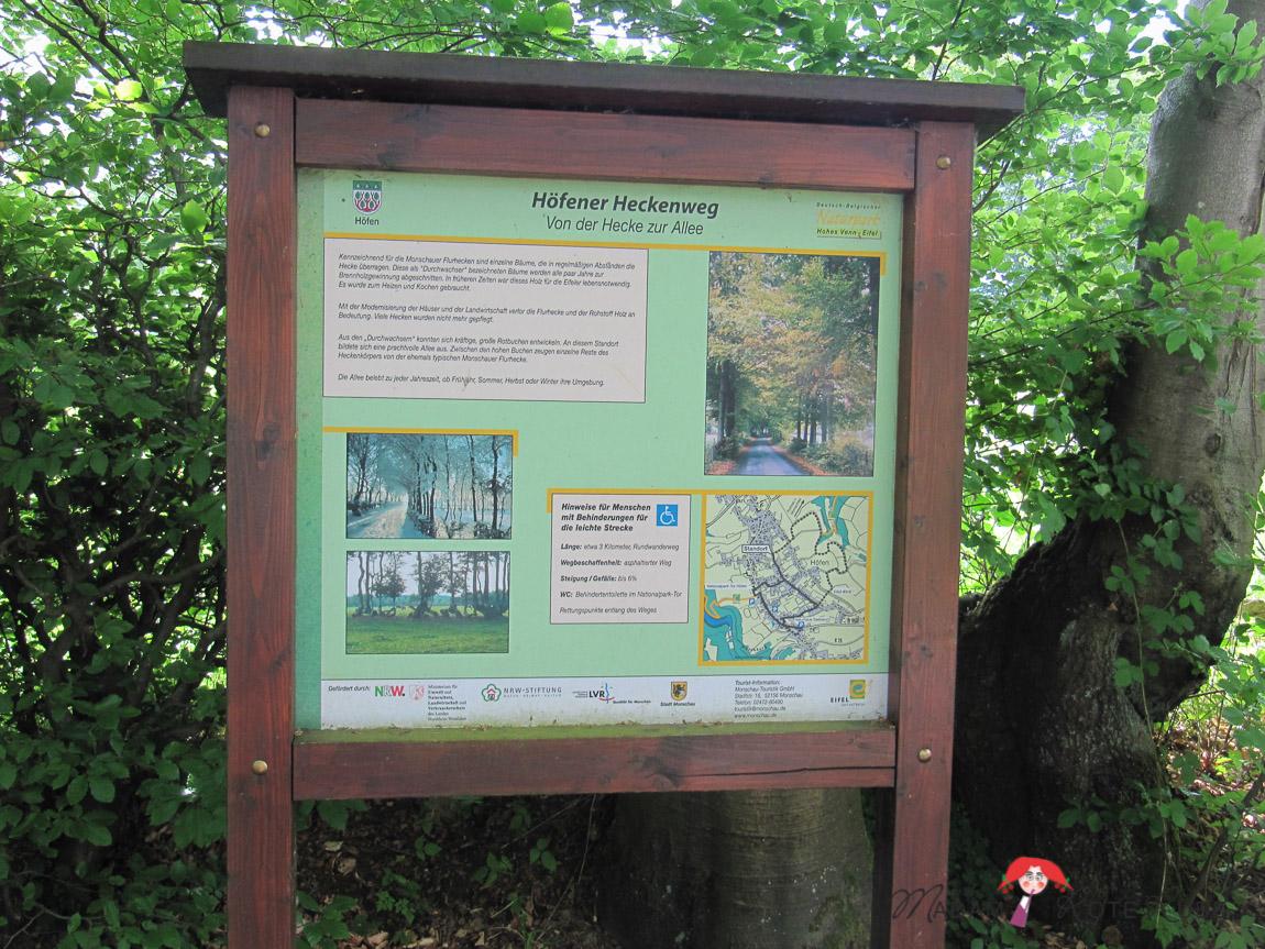 Madam Rote Rübe - Rucksackschmaus VI und der Höfener Heckenweg in der Eifel