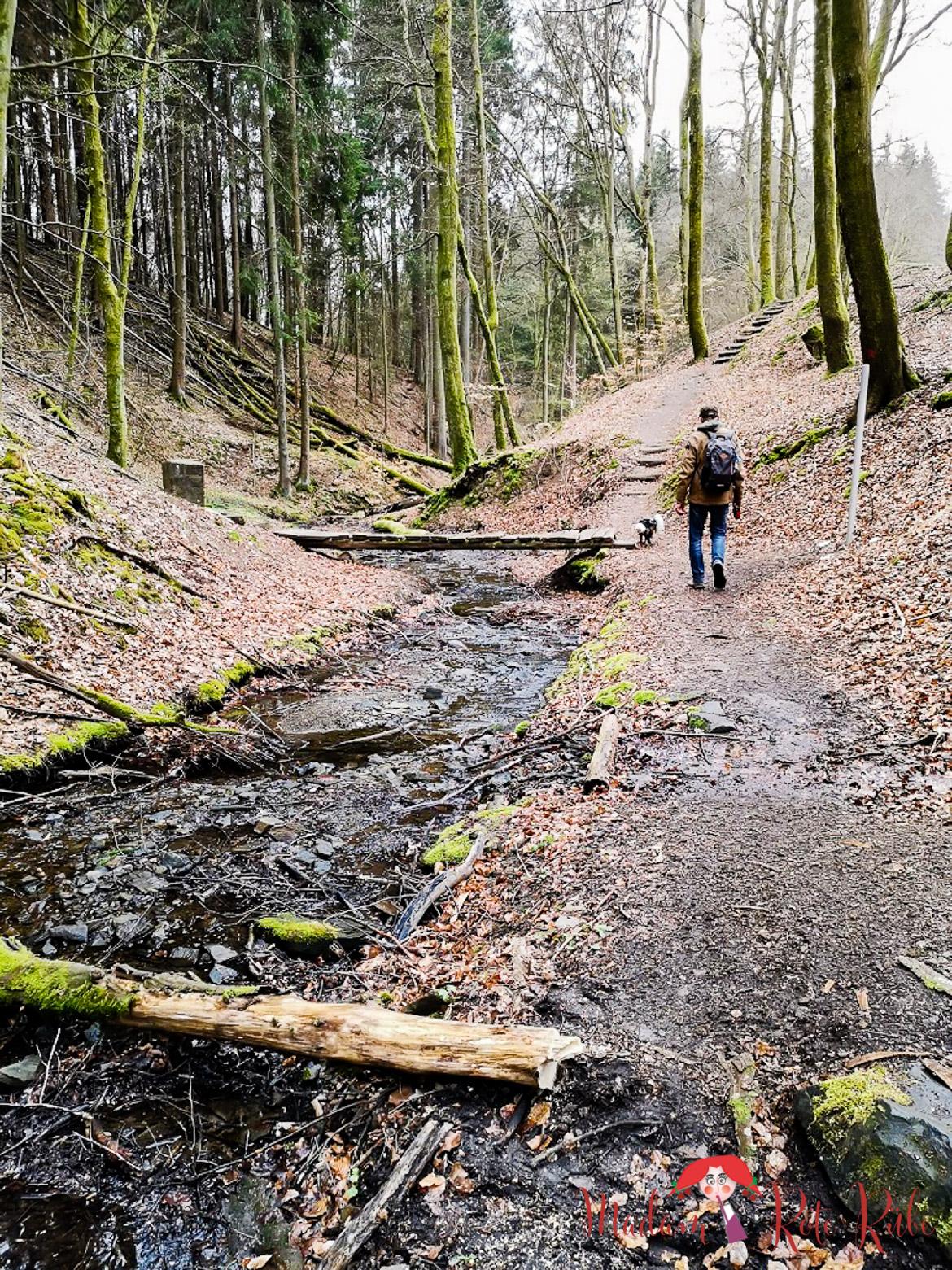 Madam Rote Rübe - Rucksackschmaus | Wandern auf dem Tiefenbachpfad in St. Wendel